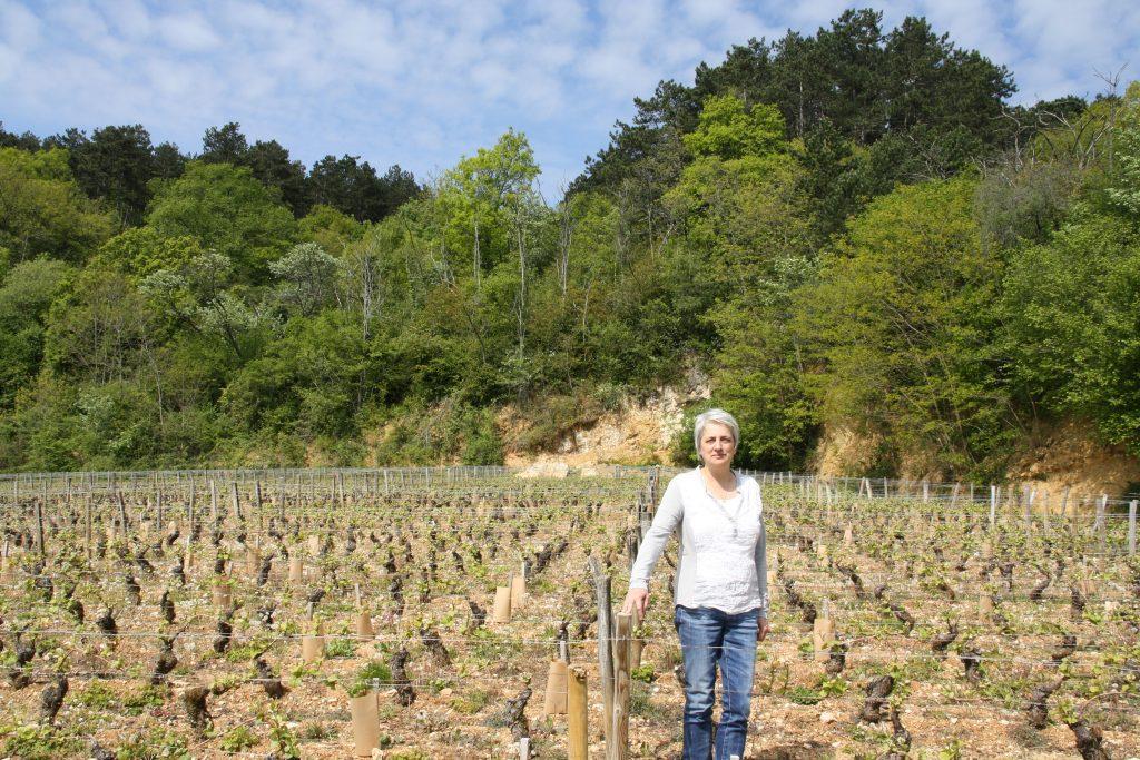 Gayda Wijn - Wijnadvies & webshop van Helène