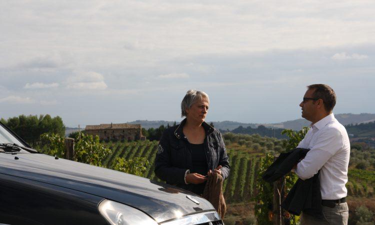 Beste wijn onder 7,50 - Wijn van Helene Webshop & Wijnadvies